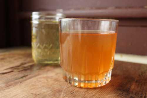 Полезные свойства чайного гриба, противопоказания