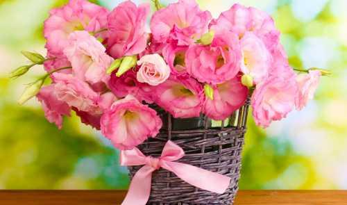 Как сохранить букет цветов свежим и красивым