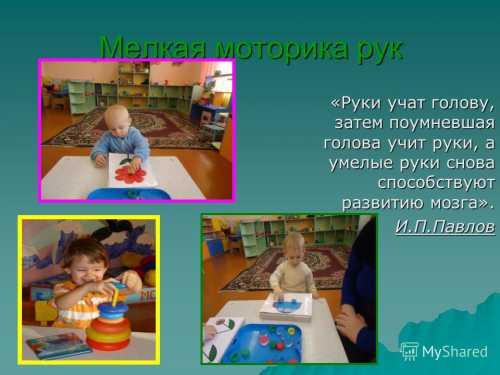 Сенсорное развитие детей раннего возраста
