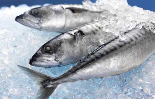 Как разморозить рыбу: практические советы